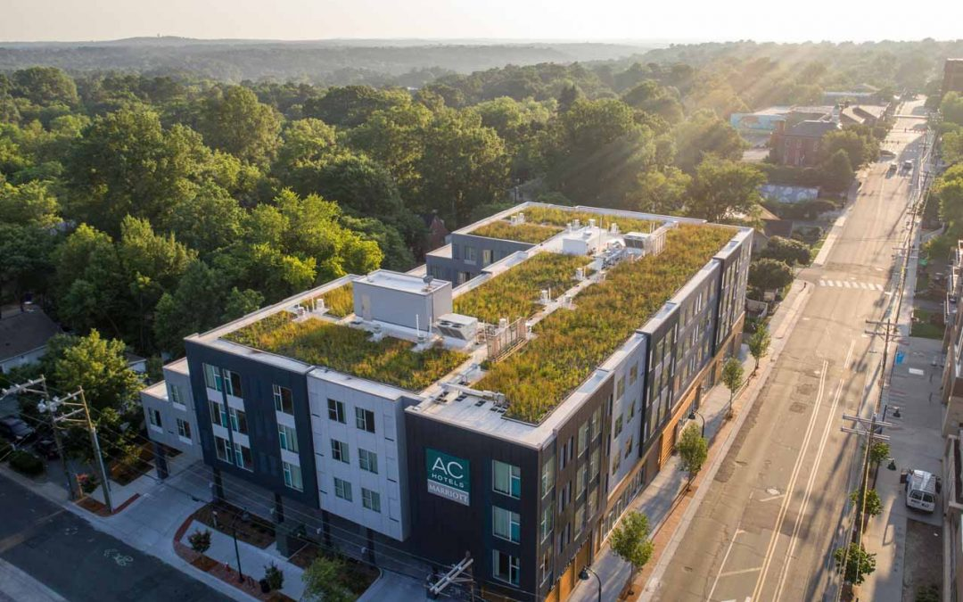 Your Guide to Green Roofs: Green Roofs FAQ