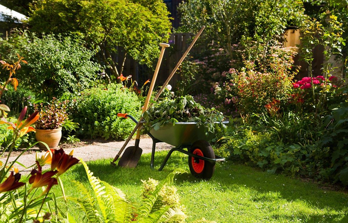 This is an image of garden maintenance